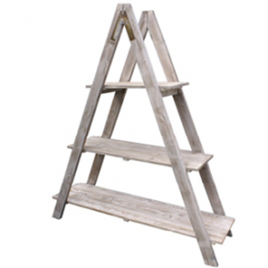 Display ladder